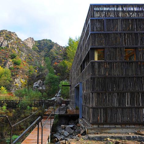 Une bibliothèque écolo, entourée par la forêt
