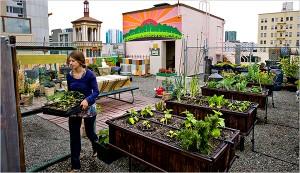 urban-farming-people