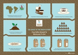 roots_infograph